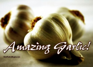 the-amazing-health-benefits-of-garlic-supplements