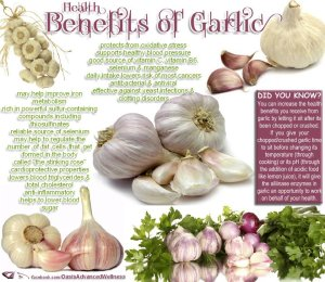 the health benefits of garlic